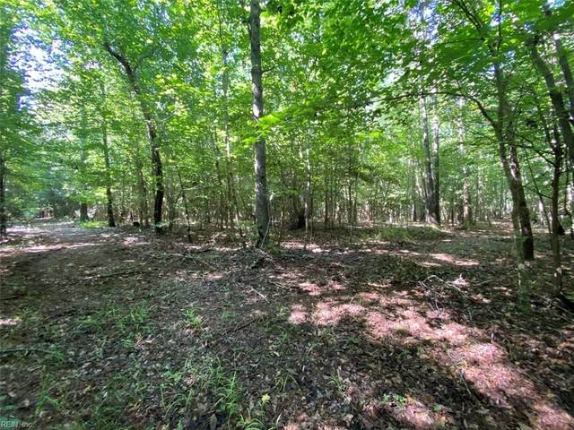 47.6ac Colonial Trl W, Surry County, VA 23881 (#10395586) :: Rocket Real Estate