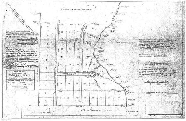 119 Joanne Ct, James City County, VA 23168 (#10403072) :: Rocket Real Estate