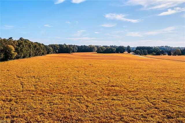 2672 Kings Fork Rd, Suffolk, VA 23434 (#10407748) :: Avalon Real Estate
