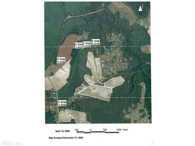 LOT 2 Labrador Ln, Suffolk, VA 23435 (MLS #1640016) :: AtCoastal Realty