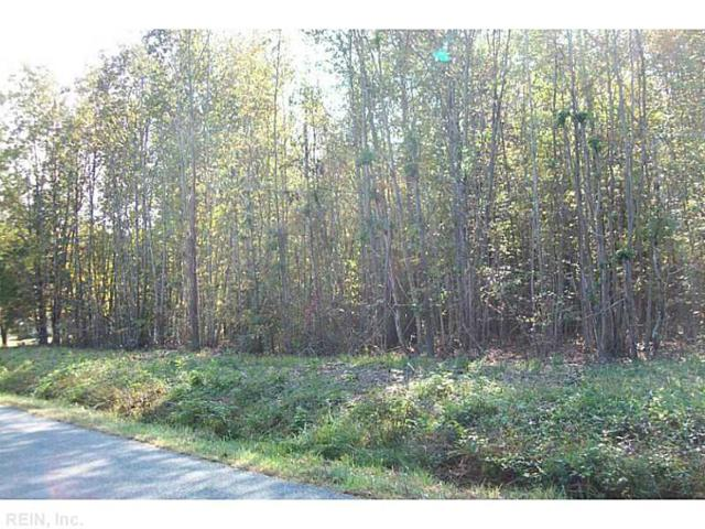 10+ACR Vfw Rd, King William County, VA 23181 (MLS #1652591) :: Chantel Ray Real Estate