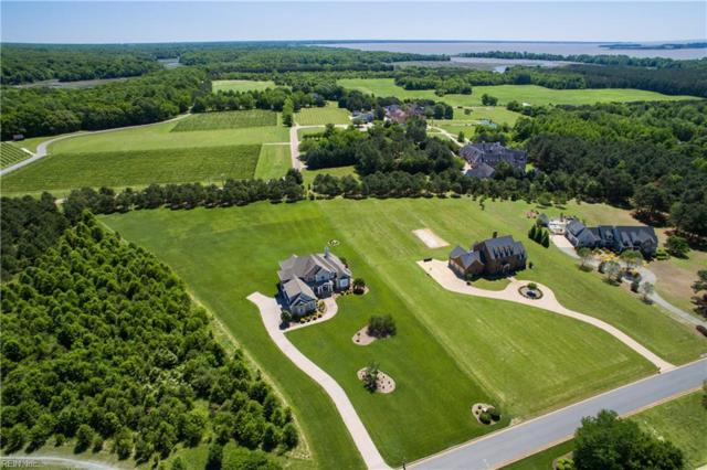2728 Jockeys Neck Trl, James City County, VA 23185 (#10124578) :: The Kris Weaver Real Estate Team