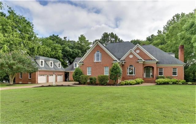 126 Goose Hill Way, Isle of Wight County, VA 23430 (#10133611) :: RE/MAX Central Realty