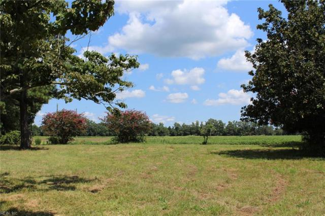 10888 Wyanoke Trl, Suffolk, VA 23437 (MLS #10144584) :: Chantel Ray Real Estate