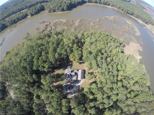 14100 Captains Point Ln, Isle of Wight County, VA 23430 (#10158176) :: Abbitt Realty Co.