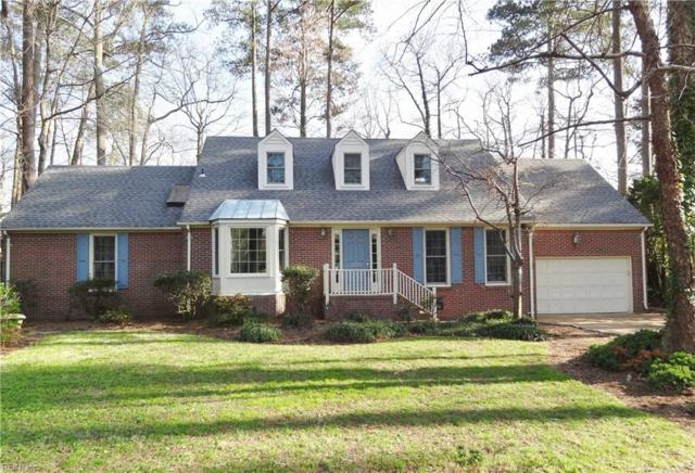 1205 Tanager Trl, Virginia Beach, VA 23451 (#10169241) :: Atkinson Realty