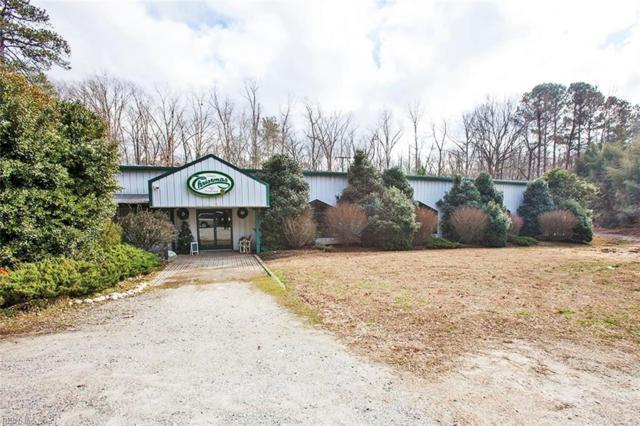 1820 Jamestown Rd, James City County, VA 23185 (#10170173) :: Abbitt Realty Co.