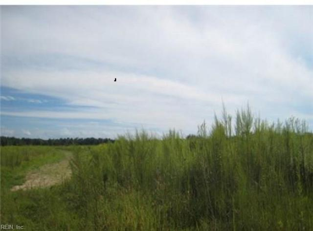 Lot 8A Medical Center Rd, Gates County, NC 27937 (#10173431) :: Austin James Real Estate