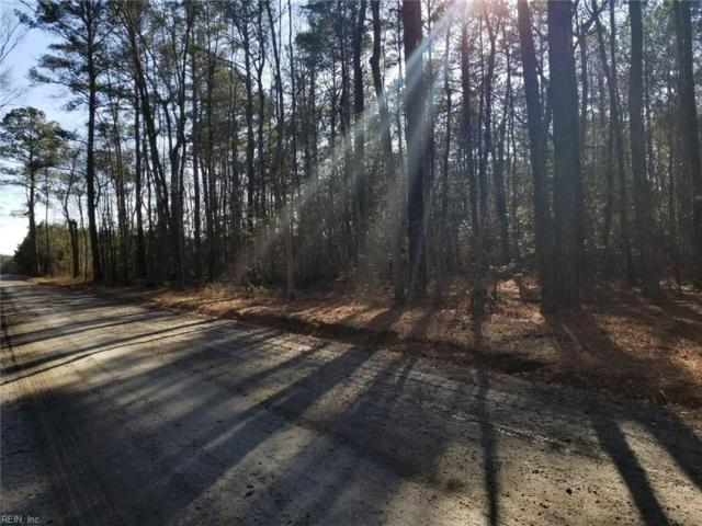PAR 1 Braswell Dr, Isle of Wight County, VA 23487 (#10174506) :: Austin James Real Estate