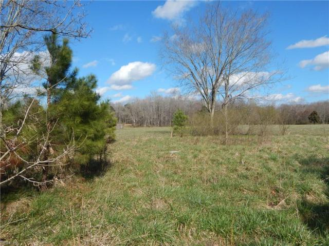 3000 Whaleyville Blvd, Suffolk, VA 23434 (#10179929) :: Reeds Real Estate