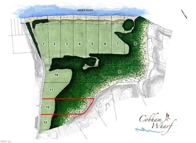 2212 Cobham Wharf Rd, Surry County, VA 23883 (#10188345) :: The Kris Weaver Real Estate Team