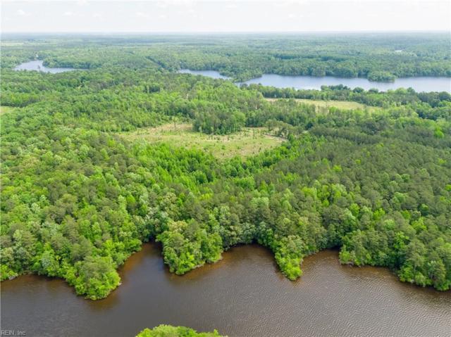 45.5ac Diascund Reservoir Rd, New Kent County, VA 23089 (MLS #10188632) :: AtCoastal Realty