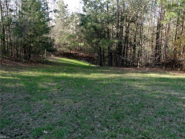 9919 E Cork Rd, James City County, VA 23168 (#10192628) :: The Kris Weaver Real Estate Team
