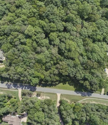 8209 Natures Way, James City County, VA 23188 (#10192878) :: Resh Realty Group