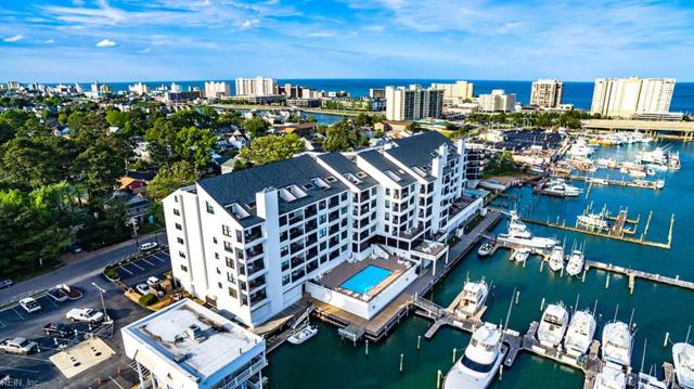 500 Winston Salem Ave #507, Virginia Beach, VA 23451 (MLS #10193703) :: Chantel Ray Real Estate