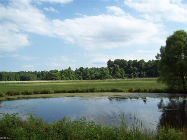 5044 Kings Grant Cir, Suffolk, VA 23434 (#10195987) :: Reeds Real Estate