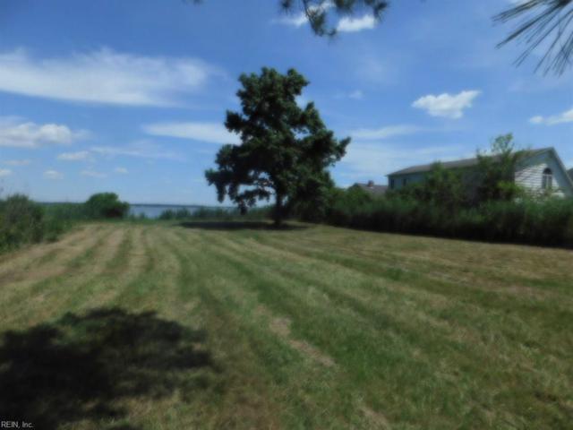1514 Dandy Loop Rd, York County, VA 23692 (#10196839) :: Abbitt Realty Co.