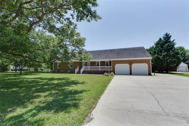119 Queen Annes Ct, Suffolk, VA 23434 (#10196929) :: Berkshire Hathaway HomeServices Towne Realty