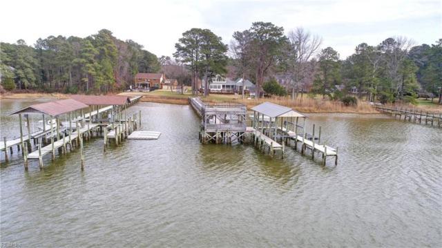 132 River Point Dr, York County, VA 23693 (#10199435) :: The Kris Weaver Real Estate Team