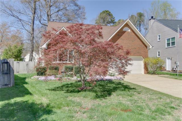 438 Honey Locust Way, Chesapeake, VA 23320 (#10200068) :: Atkinson Realty