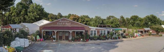 7348 Richmond Rd, James City County, VA 23188 (#10200417) :: Abbitt Realty Co.