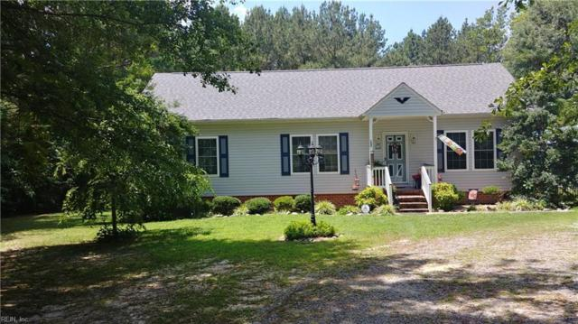 21152 Medicine Springs Rd, Southampton County, VA 23837 (#10202768) :: Resh Realty Group