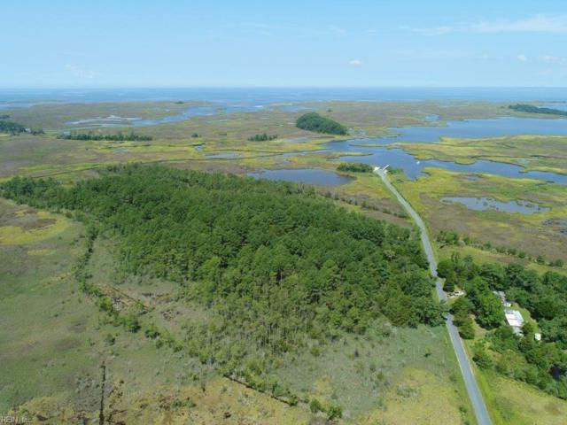 22400 Youngs Creek Rd, Accomack County, VA 23308 (#10209675) :: Momentum Real Estate