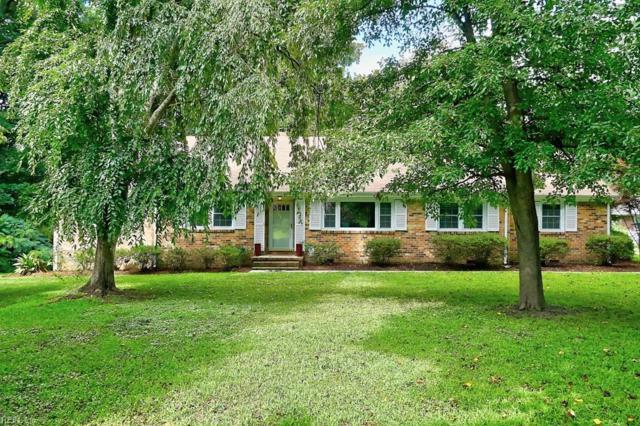 505 Mockingbird Dr, Virginia Beach, VA 23451 (#10210097) :: Austin James Real Estate