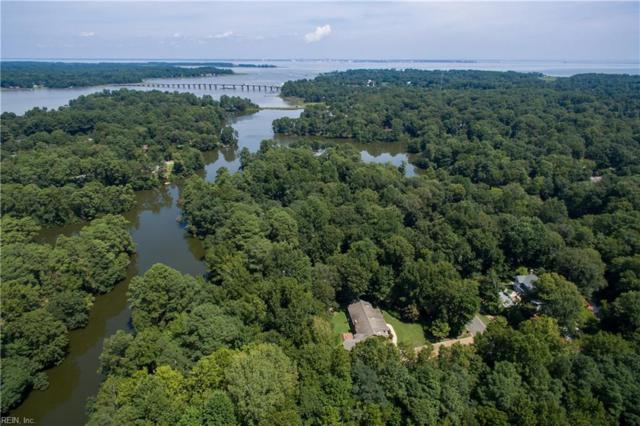 1521 Woodspath Ln, Suffolk, VA 23433 (#10212063) :: RE/MAX Central Realty