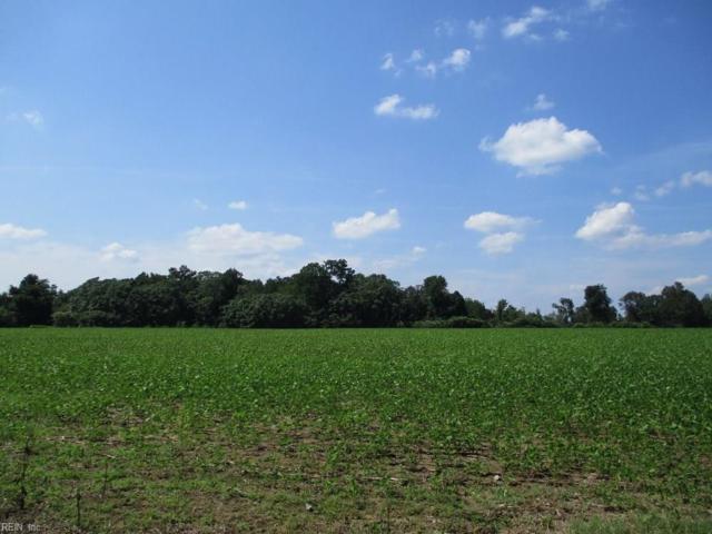 118AC Racefield Dr, James City County, VA 23168 (#10212403) :: Austin James Real Estate