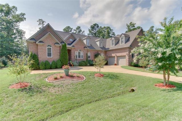 153 Blackheath, James City County, VA 23188 (MLS #10212490) :: Chantel Ray Real Estate
