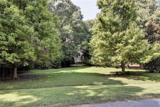 125 Riverview Plantation Dr, James City County, VA 23188 (#10216247) :: The Kris Weaver Real Estate Team