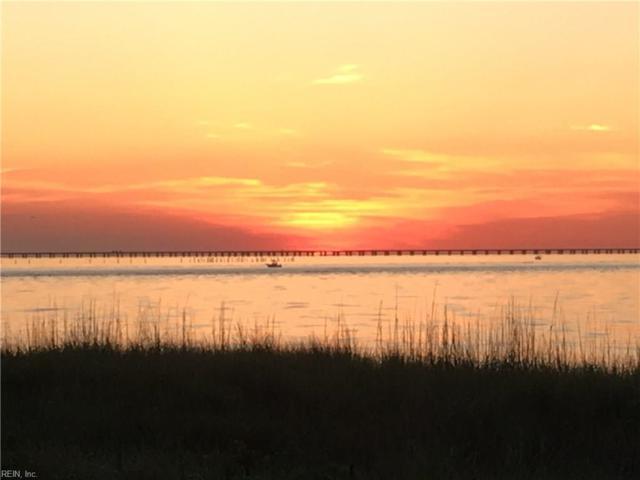 3216 Silver Sands Cir #101, Virginia Beach, VA 23451 (#10218284) :: Atkinson Realty