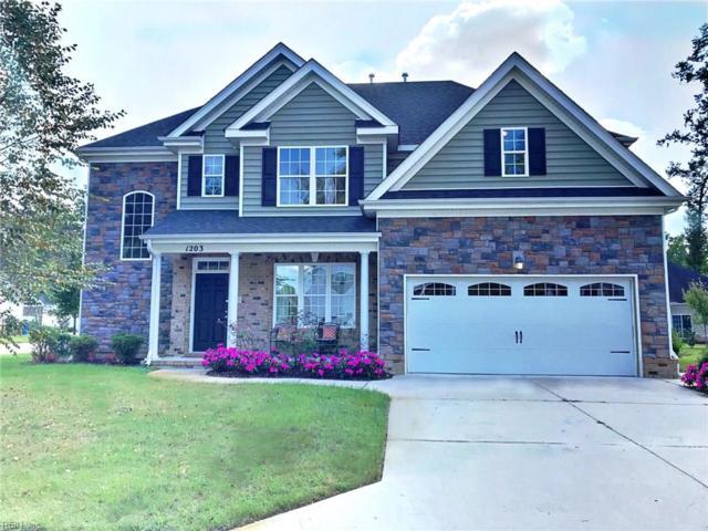 1203 Bonnie View Arch, Chesapeake, VA 23320 (#10218304) :: Berkshire Hathaway HomeServices Towne Realty