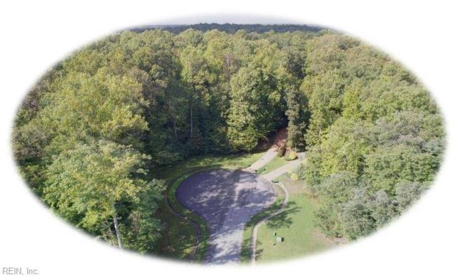 8144 Wrenfield Dr, James City County, VA 23188 (#10218971) :: Reeds Real Estate
