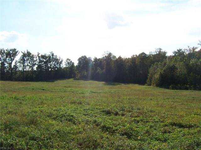 51 Acr Private Rd, Southampton County, VA 23866 (#10220424) :: Abbitt Realty Co.