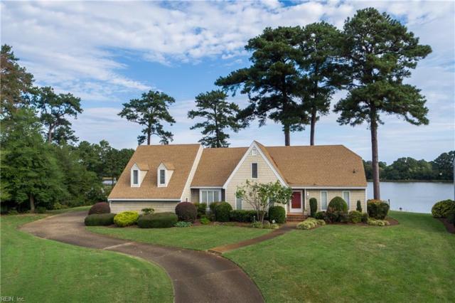 3800 Stonebridge Lndg, Chesapeake, VA 23321 (#10222801) :: The Kris Weaver Real Estate Team