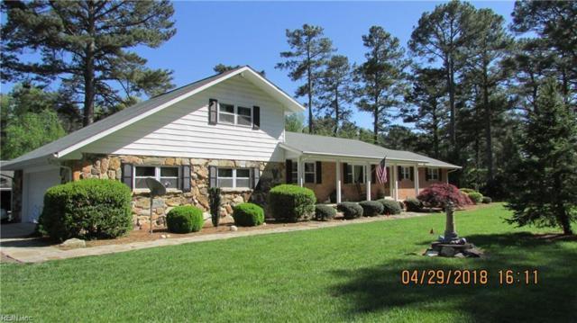 19019 Stokes Rd, Sussex County, VA 23897 (#10224012) :: Coastal Virginia Real Estate