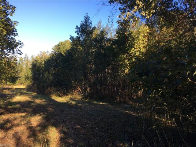 3.5AC Sleepy Hole Rd, Suffolk, VA 23435 (MLS #10224279) :: Chantel Ray Real Estate