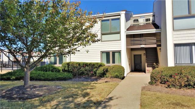 3924 Whispering Oaks Pl #101, Virginia Beach, VA 23455 (#10224934) :: Vasquez Real Estate Group