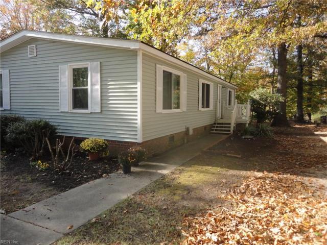 265 Burnetts Way, Suffolk, VA 23434 (#10227575) :: Abbitt Realty Co.