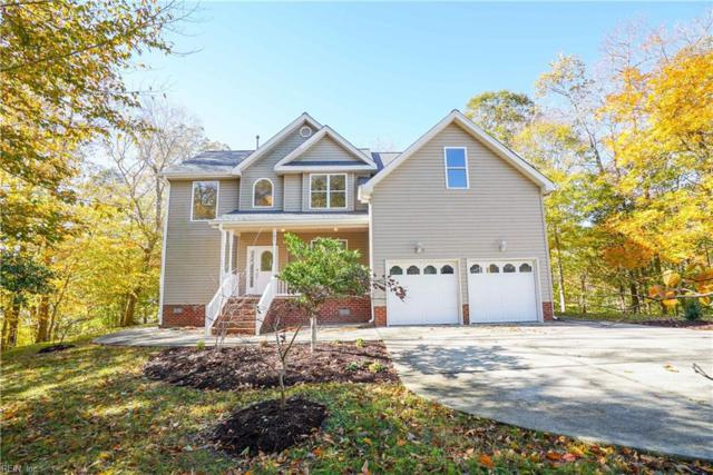 101 View Pointe Dr, Newport News, VA 23603 (#10228132) :: Atkinson Realty
