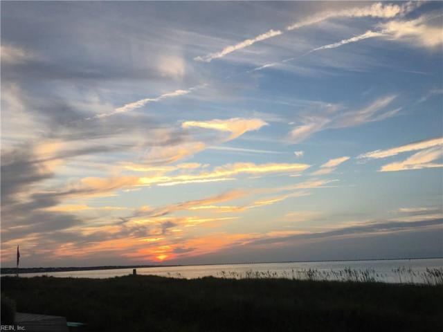 3176 Silver Sands Cir #201, Virginia Beach, VA 23451 (#10229184) :: Abbitt Realty Co.