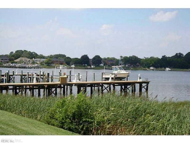 16 Sandie Point Ln, Portsmouth, VA 23701 (#10230781) :: Coastal Virginia Real Estate