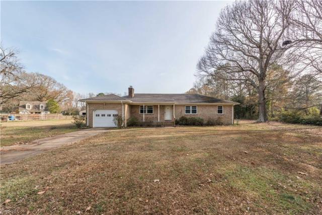 569 Saddlehorn Dr, Chesapeake, VA 23322 (MLS #10231354) :: AtCoastal Realty
