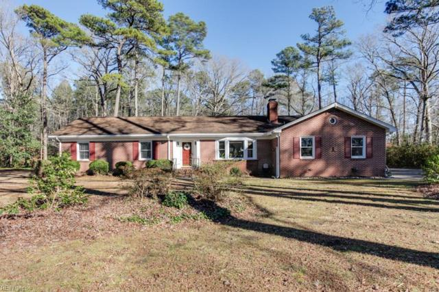 15311 New Towne Haven Ln, Isle of Wight County, VA 23314 (#10232648) :: Coastal Virginia Real Estate