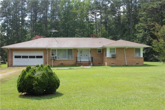 3229 Spring Grove Rd, Surry County, VA 23881 (#10235140) :: Austin James Real Estate