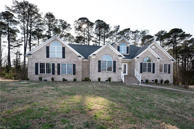 9388 Rivershore Dr, Suffolk, VA 23433 (#10236573) :: Austin James Real Estate