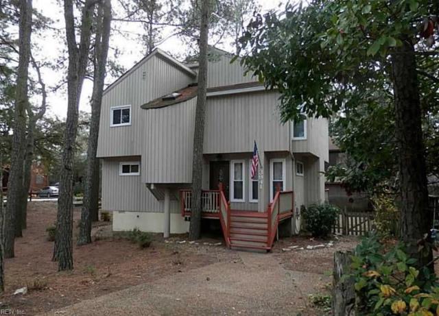 3941 Shady Oaks Dr, Virginia Beach, VA 23455 (MLS #10238985) :: AtCoastal Realty