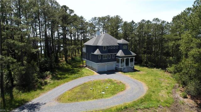 12024 Hacksneck Rd, Accomack County, VA 23358 (#10239818) :: Berkshire Hathaway HomeServices Towne Realty